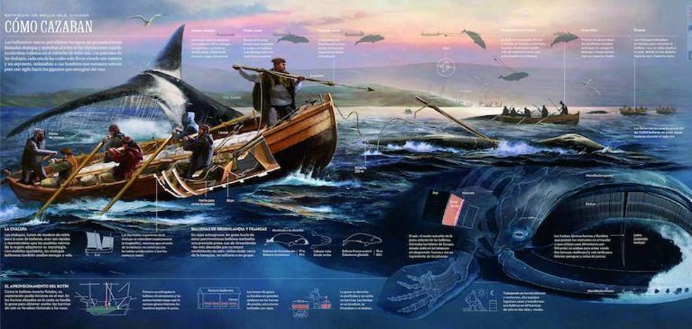 Los balleneros vascos atrapan a 'National Geographic'