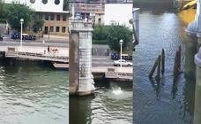 Bilbao no sanciona saltar desde los puentes mientras Plentzia lo multa con 300 euros