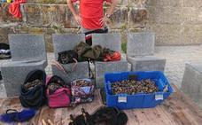 Los 75 kilos de percebes requisados en Gaztelugatxe, para el Banco de Alimentos: «Han gustado mucho»
