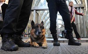 Queda desierto de nuevo el concurso de los perros de la Policía de Bilbao