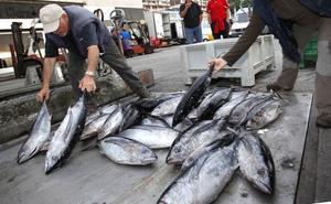 El Gobierno central retrasa hasta el 23 de agosto la prohibición para pescar bonito