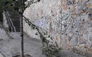 El Ayuntamiento de Getxo denuncia actos vandálicos contra una decena de árboles y la red de riego
