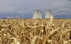 El alza de CO2 en la atmósfera reducirá los nutrientes de alimentos clave