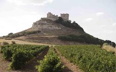 La eterna estrofa de los vinos del Duero