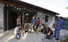 La Fundación Apasos abre su nuevo centro de rehabilitación para perros en Sopuerta