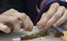 El cannabis es la droga ilegal más habitual en Euskadi al consumirla casi un 9% de la población