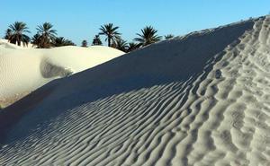 Gizakiek 500 urtetan atzeratu zuten Saharako basamortutzea