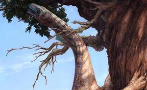 Dinosauroak nola egin ziren hain handiak azal daiteke haien fosil baten bidez