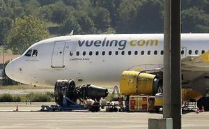 Los expertos proponen marcar a los buitres que merodean por el aeropuerto de Loiu