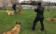 Vitoria multa a 32 dueños de perros por llevarlos sueltos y les sanciona con 150 euros