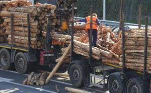 Dos horas de retenciones en el Txorierri tras perder un camión parte de su carga de troncos
