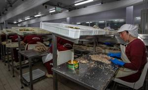 El grupo que postula a Bermeo capital mundial del atún se agranda