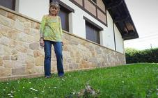 Los alcaldes del Txorierri piden en Madrid medidas «urgentes» contra los buitres en Loiu