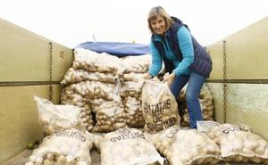 20.000 kilos de patatas para el Banco de Alimentos de Álava