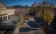 Gernika recurre al anclaje de los tilos del Pasealeku por seguridad