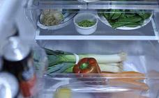 Cuando se estropea el frigorífico