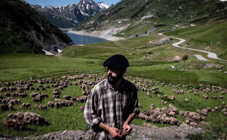 Así es la vida de un joven pastor en los Alpes franceses