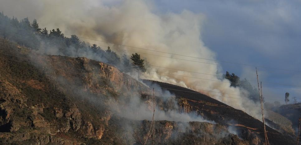 Extinguido un incendio en una zona de matorrales en Trapagaran