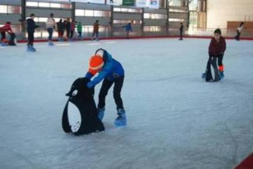 Landako Gunea se convertirá en una pista de hielo a partir del 22