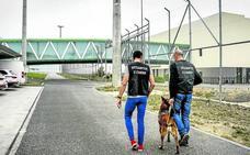Dos presos de la cárcel de Álava tratan de introducir 28 bellotas de hachís durante una visita de su familia
