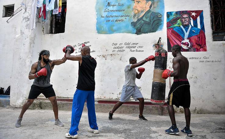 K.O. al boxeo cubano