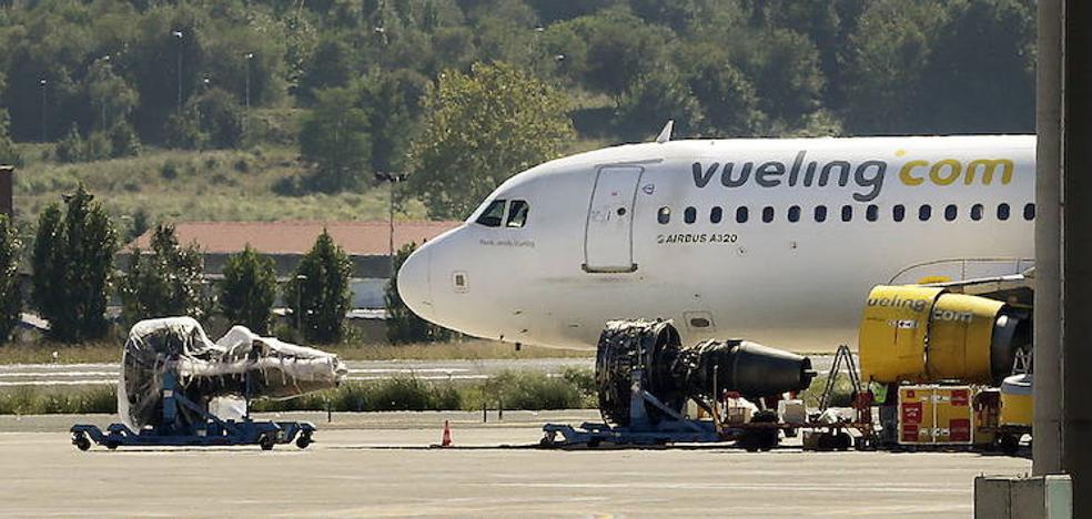 Bizkaia refuerza la vigilancia en el entorno del aeropuerto para controlar la presencia de buitres