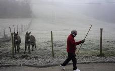 Gélida madrugada en Euskadi: -8,5 grados en Ozaeta, -7,2 en Vitoria, -7,5 en Otxandio, -1,9 en Bilbao...