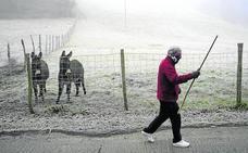 Bilbao amplía la capacidad de sus albergues invernales para tratar de capear la ola de frío