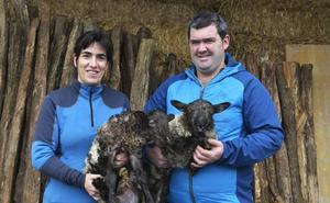 Ipiñaburu: «La carne de lechal es muy rica, pero no se aprecia»