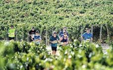 Álava se venderá en Fitur como territorio del running, el baloncesto y el enoturismo