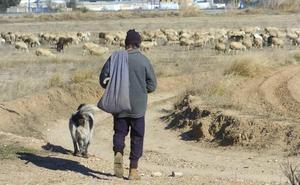Sabiñánigo, pastores contra el olvido