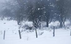 El temporal de lluvia y nieve llega a Euskadi