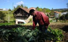 Expertos de todo el mundo debatirán en Derio sobre agricultura familiar