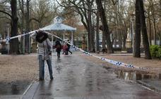 Las fuertes rachas de viento obligan a cerrar parques y paseos de Vitoria