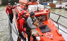 Rescatan a un perro que cayó al mar en el Puerto Viejo de Getxo