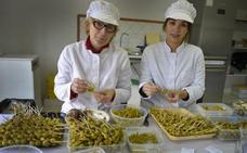 Albizabal, delicias de Amurrio pinchadas en un palillo