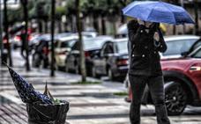 Las balsas de agua causan cortes en la red secundaria en Álava y el viento obliga a cerrar parques en Vitoria