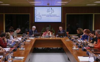 El Parlamento vasco acelera para ratificar la ley de abusos policiales