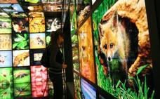 La oferta educativa en torno a la sostenibilidad relanza las visitas a Ekoetxea Urdaibai