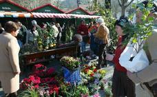 Los mejores viveros de Bizkaia se plantan este sábado en Markina