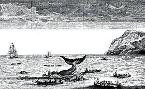 El pueblo de las ballenas