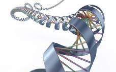 Genetika izango da hizpide datorren asteazkenean, Bidebarrietako liburutegian