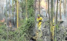 Pirómanos arrasan Cantabria con medio centenar de incendios