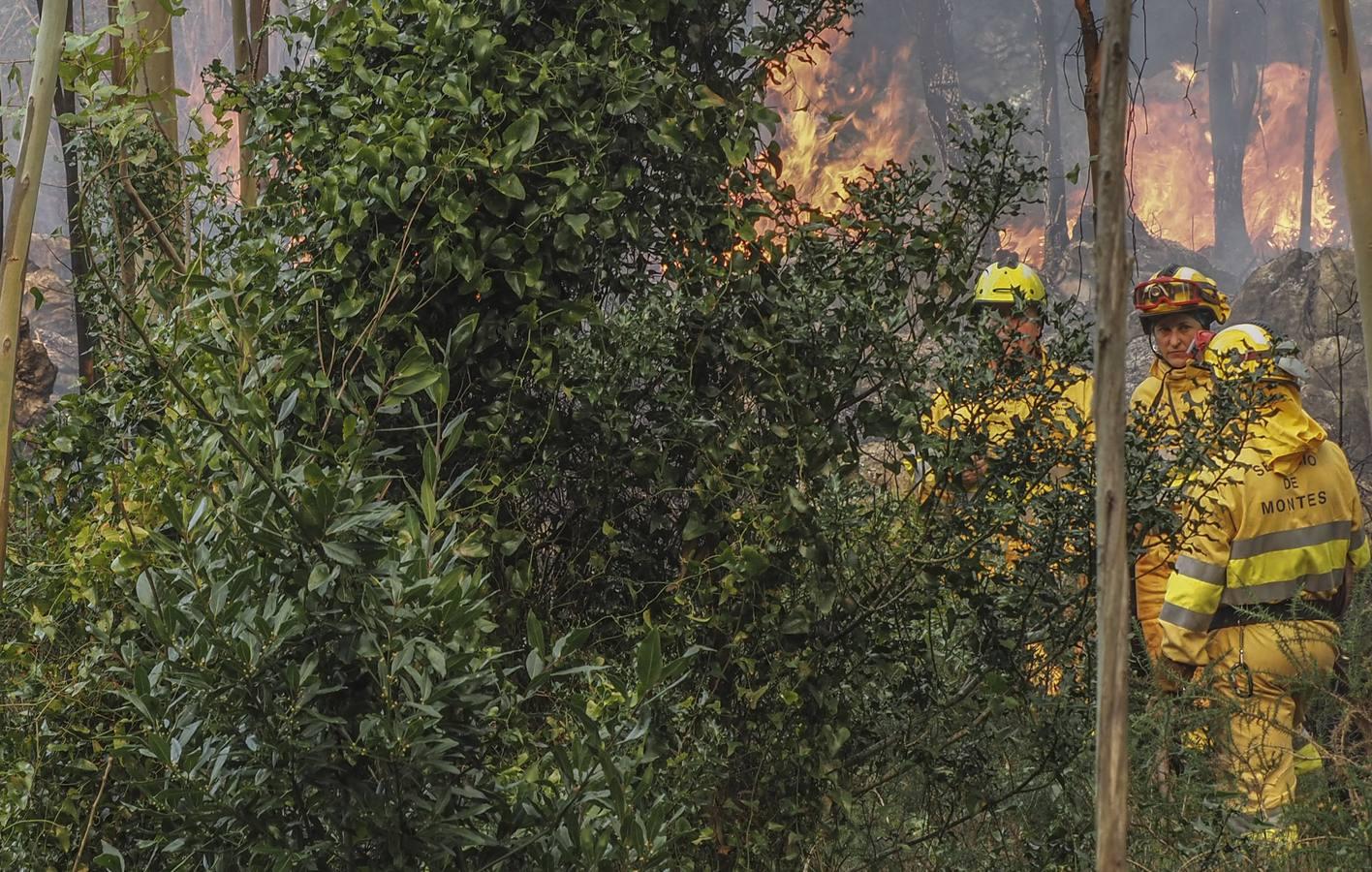 La labor de las cuadrillas que se enfrentan al fuego en Cantabria