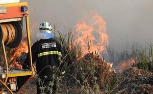 Un incendio forestal siembra la alarma en Erandio