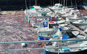 Una barrera de basura dificulta el hacerse a la mar a las lanchas del puerto de Arriluze