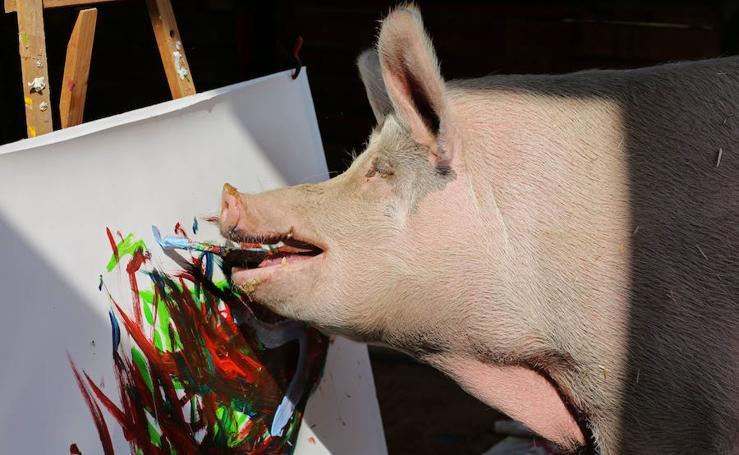 'Pigcasso' y otros pintores muy animales