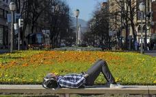 Más días sin lluvia... y con polen a tope