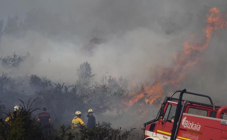 Incendio forestal en Bedia