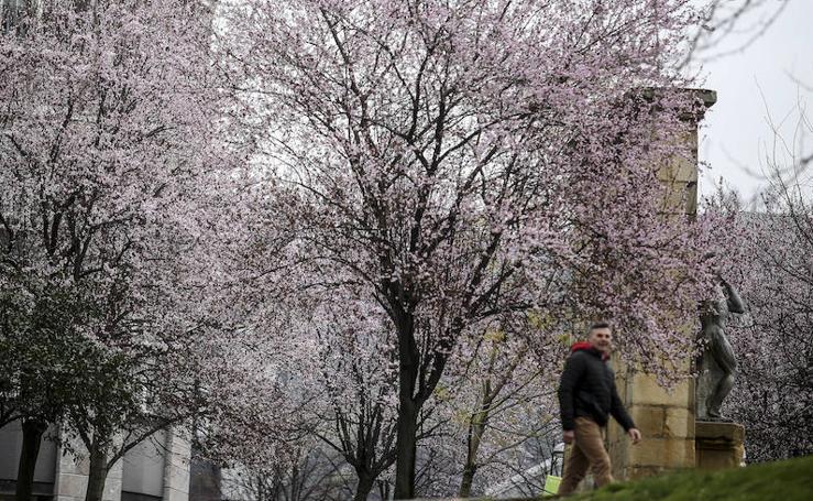 La primavera llega a Bizkaia